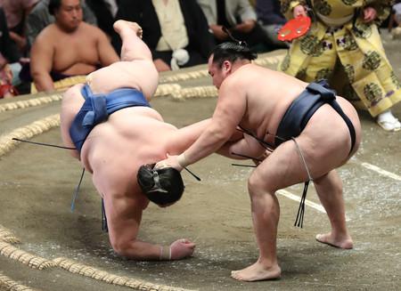 鶴竜(右)は逸ノ城を肩透かしで下す=11日、東京・両国国技館