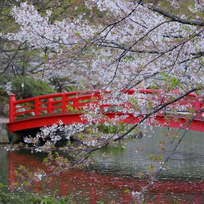 長野県須坂市