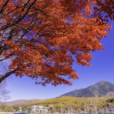 長野県立科町