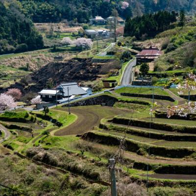 岡山県美作市
